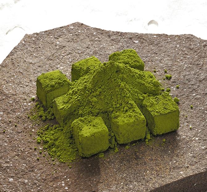 枯山水・新緑