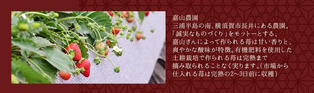 嘉山農園の苺